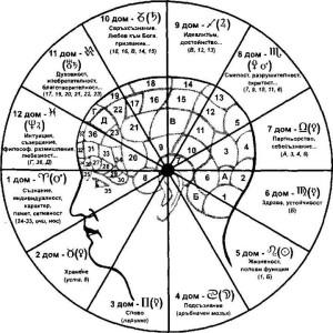 домовете в астрологията