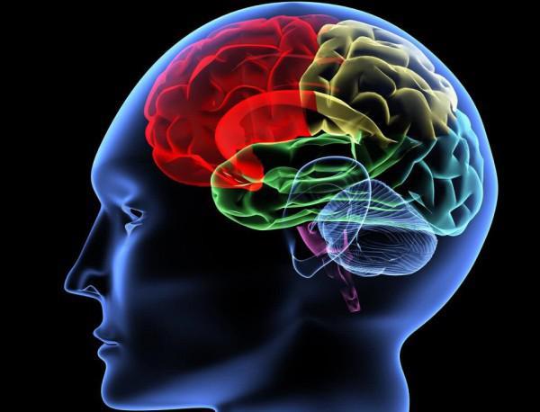 Мозъчните тумори влияят на процеса на мислене
