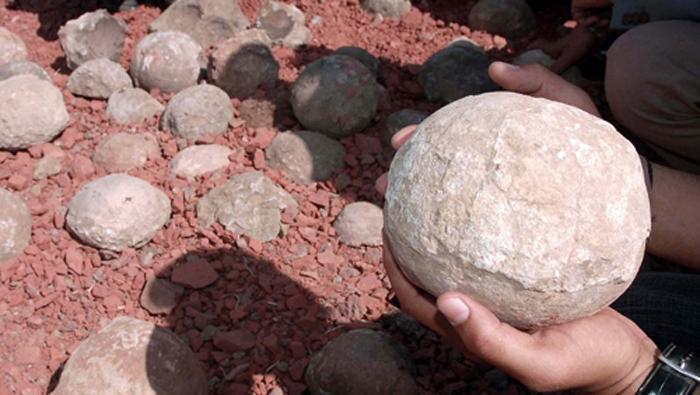 Яйца от динозаври открити в Китай