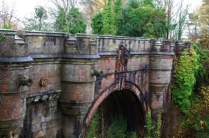 Мистериозна смърт на кучета озадачава учените – мостът, от който те се хвърлят долу