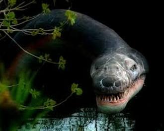 Предполага се, че в езерото до град Оймякон живее чудовище