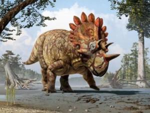 Уендицератопсът е от семейството на цератопсите