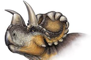 Динозаври с красиви рога и щитове на лицето са намерили учените