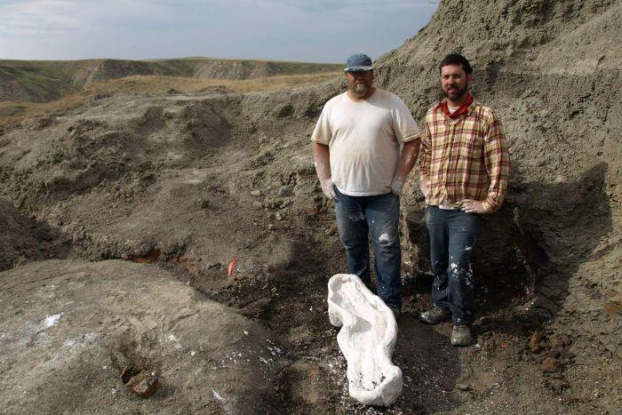 Динозаври от вида на уендицератопс открити в Канада
