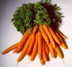 Морковите съдържат полиацитилени, които са мощно средство срещу туморите