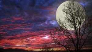Очаквайте! Синя Луна – явлението, което се случва рядко!