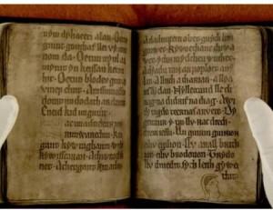 Черената книга на Каматрен