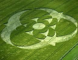 Според една от теориите мистериозните житни кръгове са човешко дело
