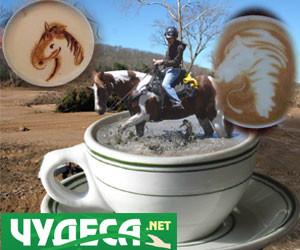 гледане на кафе кон джезве