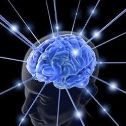 """От медецинска гледна точка, дежа вю може да бъде причинено от """"грешка"""" в мозъка"""