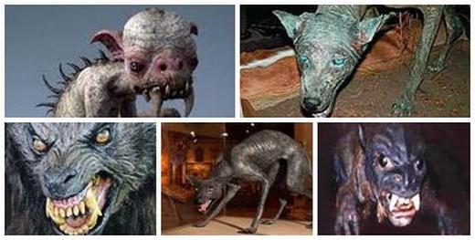 Чупакабра – страховитият звяр, който сее смърт и паника (ВИДЕО)