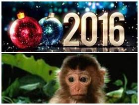 Годината на Огнената Червена Маймуна, обещава да бъде успешна и