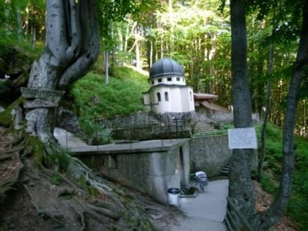 Кръстова гора – мястото, където се случват чудеса
