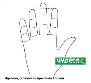 хиромантия гледане на ръка 06