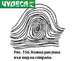 хиромантия гледане на ръка 02