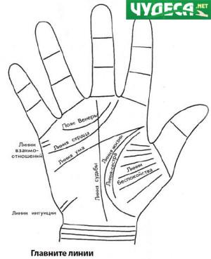 хиромантия гледане на ръка 23