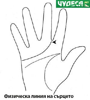 хиромантия гледане на ръка 20