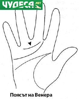 хиромантия гледане на ръка 18