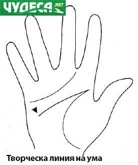 хиромантия гледане на ръка 17