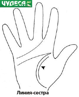 хиромантия гледане на ръка 13