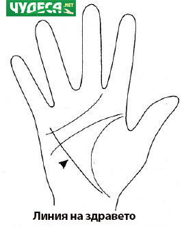 хиромантия гледане на ръка 11