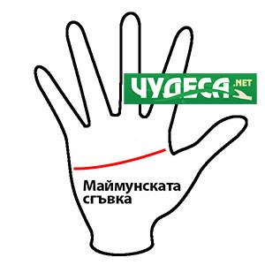 хиромантия гледане на ръка 09