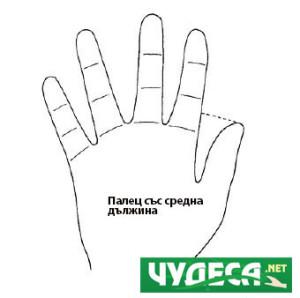 хиромантия гледане на ръка 08