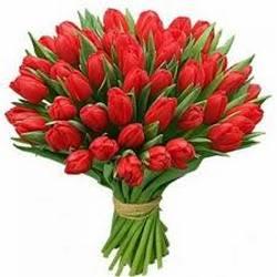 зодия Овен цветя