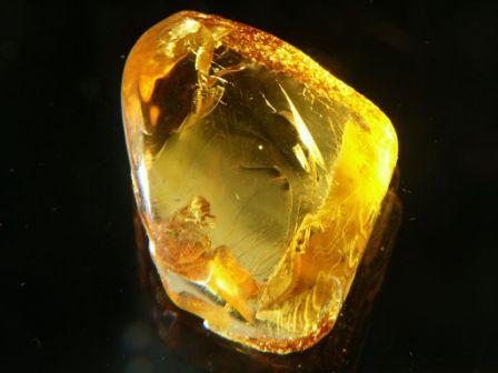 Кехлибар – магическият камък, даряващ здраве и благоденствие