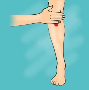 рефлексотерапия точков масаж су джок акупресура 07