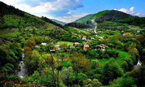 село бакьово биоенерготерапевт, Дона Идън, Енергийно лечение, енергия, Енерготерапия 03