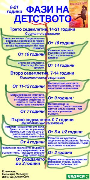 инфографика Фази на детството по Бернард Ливехуд