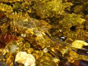 златоносни реки в Родопите, иманяри злато - 04