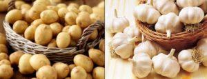 Здрави непокълнали картофи и чесън.