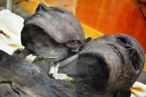 Двуглавият гигант Kap-Dwa – намерен в Патагония през 17-ти век.