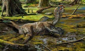 Открит е скелет на нов вид летящ динозавър - овирапотозавър в Китай. Може би така е изглеждал преди да загине.