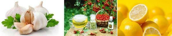 Билки и рецепти за тахикардия