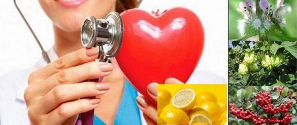 Срещу опасната тахикардия си помогнете с народни рецепти и билки