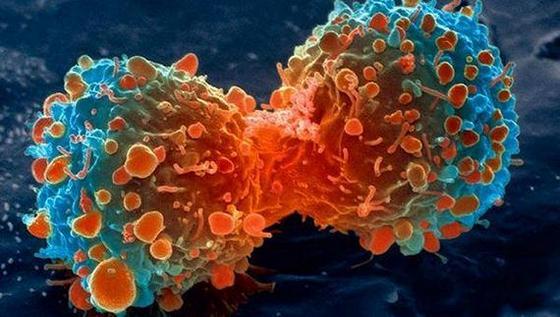 Дали ракът е генетична болест?