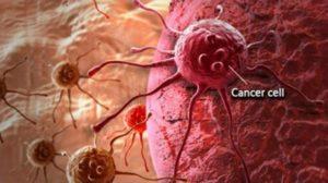 Според митовете за рака, голям процент от раковите заболявания се причиняват от наследствен ген, но учените изказват друго мнение