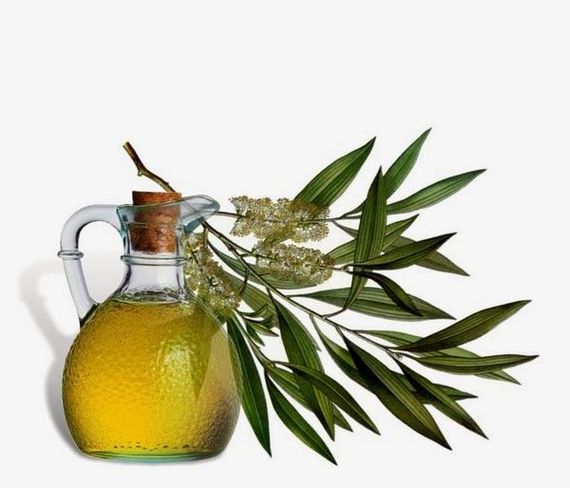 Естествени антибиотици - масло от чаено дърво