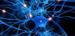 Срещу автоимунни заболявания като множествена склероза и други - нов тип терапия от италиански учени с нановезикули