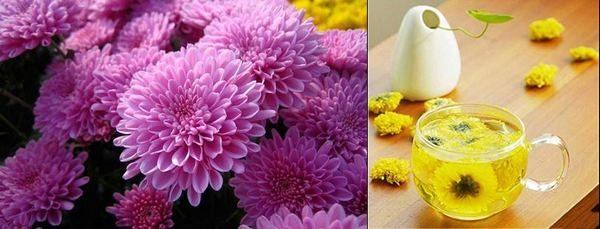 В Азия от жълти и бели хризантеми се прави чай