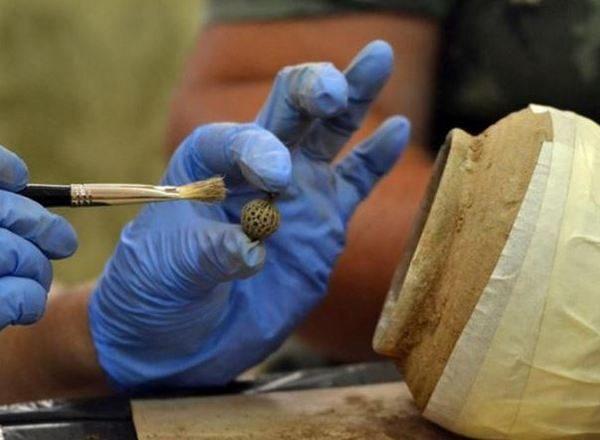 Върху монетите в глинения съд бяха намерени бижута, катарами и копчета. Изображение: Национален исторически музей, България.