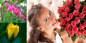 Какво тълкуване дава един съновник за сънища с цветя?