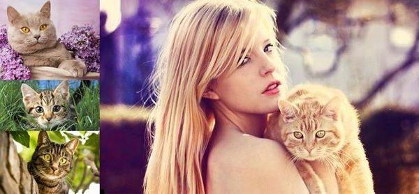 Съновник за котка – какви тълкувания се дават за такива сънища