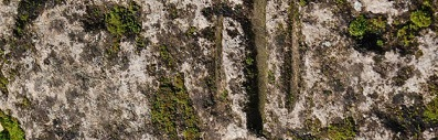 розетата от Плиска, розетката от Плиска, символ и значение