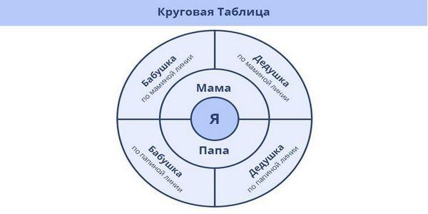 Родословно дърво с кръгова схема