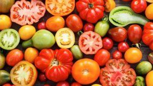 домат ползи вреди отглеждане