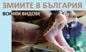 Змии в България